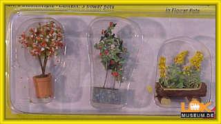 Noch 14014 Zierpflanzen in Blumentöpfen